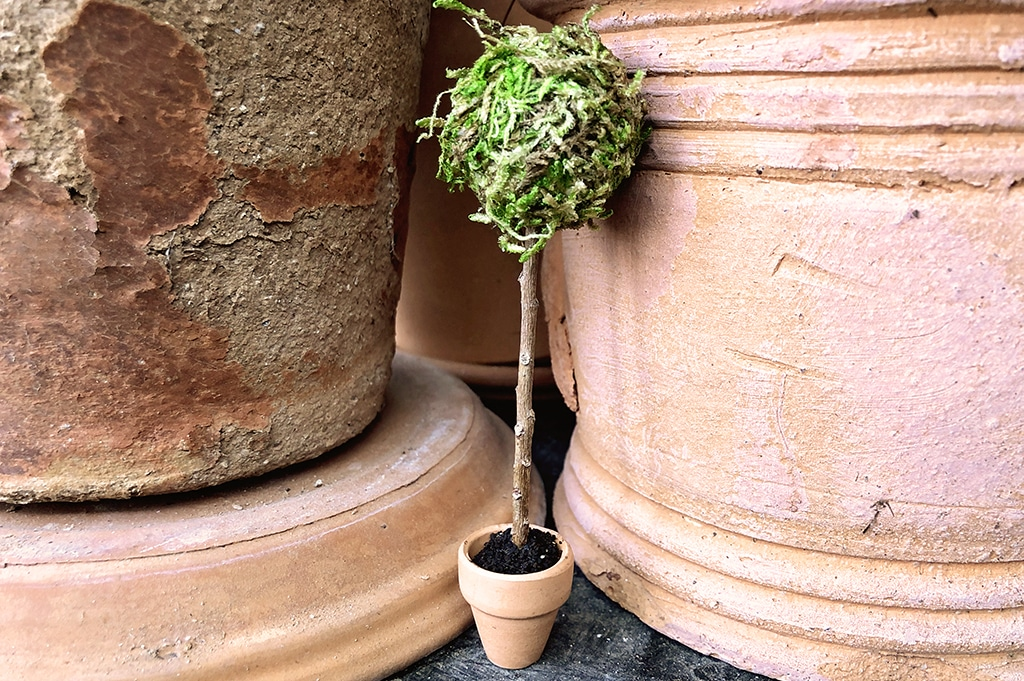 How To Make a Miniature Topiary